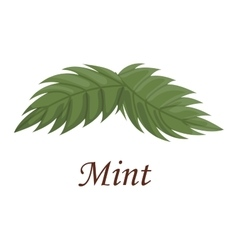 Fresh raw mint leaves vector image