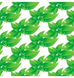 Branch with green leaves Seamless background vector image