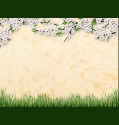 Branches with flowers and leaves on stucco wall vector