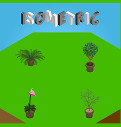 Isometric plant set of fern tree plant and other vector