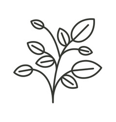 Monochrome silhouette of plant with branches and vector