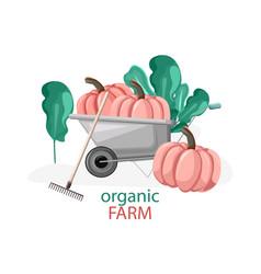 Organic farm composition with pumpkins vector