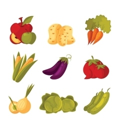 Set of green vegetable farm garden stuff vector