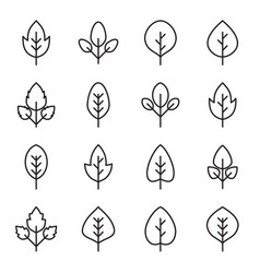 set simple leaf icons vector image