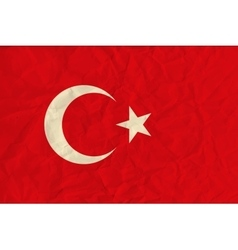 Turkey paper flag vector image