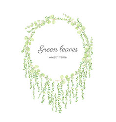 watercolor green eucalyptus leaves circle wreath vector image