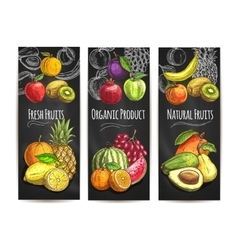 Fresh natural fruits products sketch posters vector