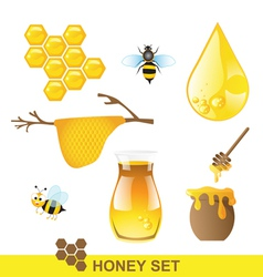 Honey set vector image