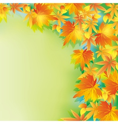 Beautiful autumn background with leaf fall vector image
