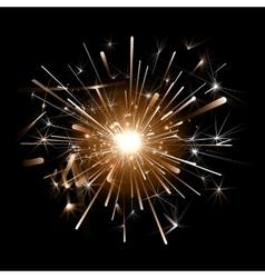 Orange firework on a black background vector image vector image