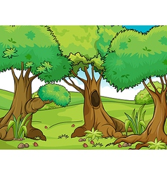 Big trees vector