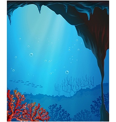 Corals inside seacave vector