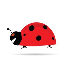 Crazy ladybug vector