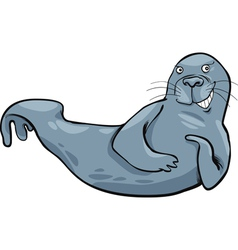 Funny grey seal vector