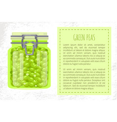 Green peas preserved food in unlabeled glass jar vector