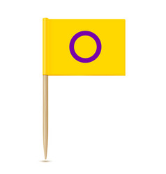 Intersex flag toothpick flag isolater on white vector