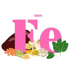 Iron healthy nutrient rich food vector