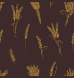 natural seamless pattern with wheat ears or vector image