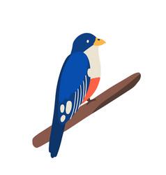 traditional cuban animal or tropical bird trogon vector image