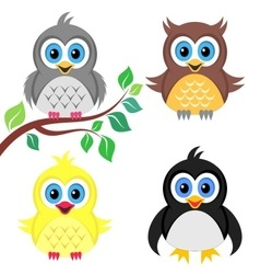 Colorful baby birds vector image vector image