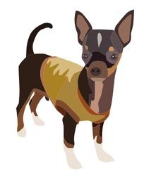 Chihuahua dog 1 vector