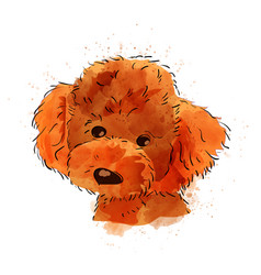 Dog hand painted watercolor isolated vector