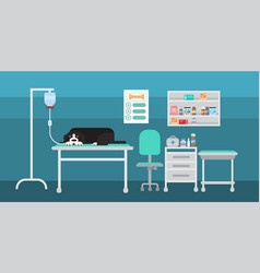 Dog in vet clinic of veterinary assistance medical vector