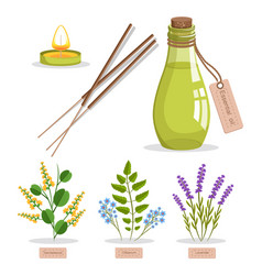 sandalwood and olibanum set vector image