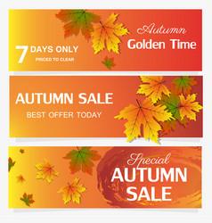 Autumn sale banner season leaf card nature vector
