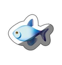 sticker colorful fish aquatic animal icon vector image vector image