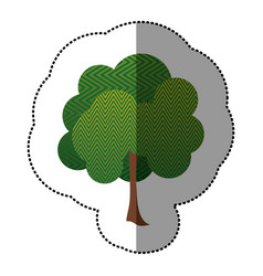 Color sticker natural tree icon vector