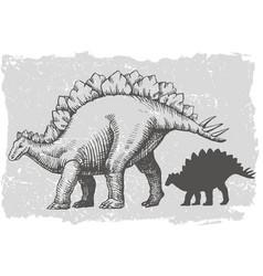 Dinosaur stegosaurus grafic hand drawn vector