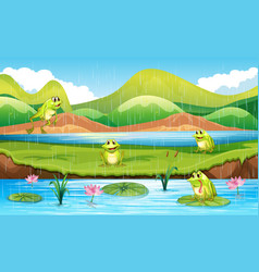 Frogs with pond scene vector