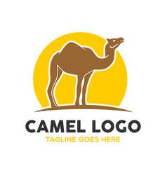 camel logo-2 vector image vector image