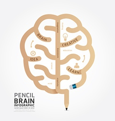 infographics pencil brain design diagram vector image