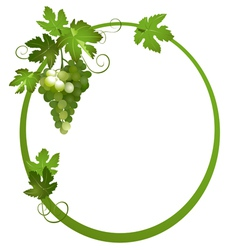 oval frame with a bunch of grapes vector image