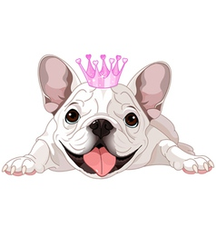 Royalty bulldog vector
