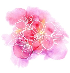 Cherry flowers on a watercolor background vector