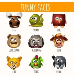Funny faces animals vector