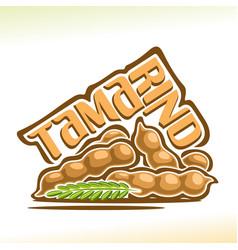 Tamarind fruit vector