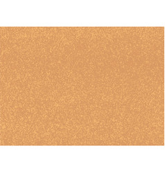 color cork wood texture vector image