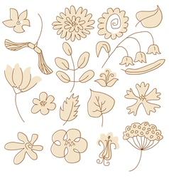Drawn flowers vector