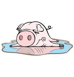 Piggy in puddle vector