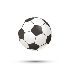 Realistic football ball icon with shadow on white vector image