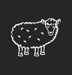 sheep chalk white icon on black background vector image
