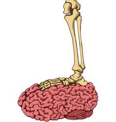Skeleton brain step color vector