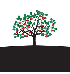 Young tree with green leafs roots and red apple vector