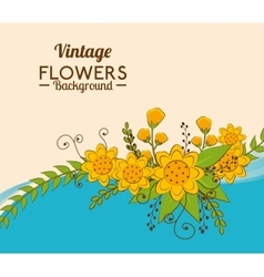 Flowers and floral design vector image
