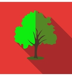 Tree with green crown icon flat style vector image