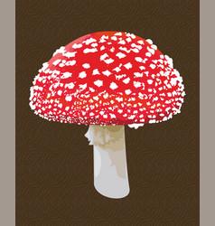 Amanita mushroom vector